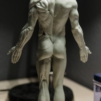 anatomical male figure 01
